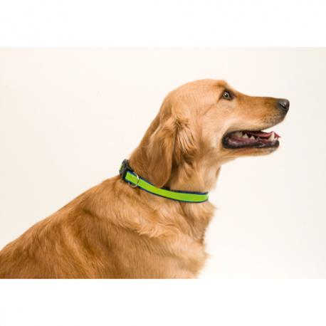 Collar Muttley - Imagen 1
